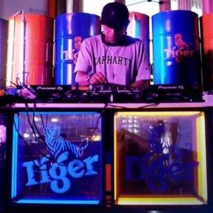 tiger-barrels-on-a-party