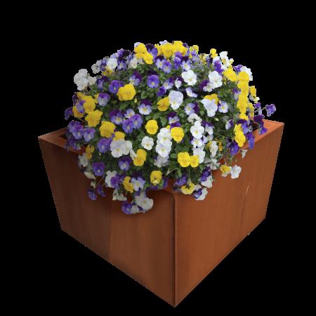 cortenstaal-plantenbak